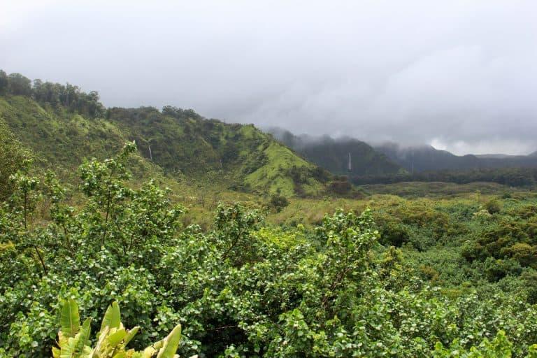 Wailua Valley State Wayside view