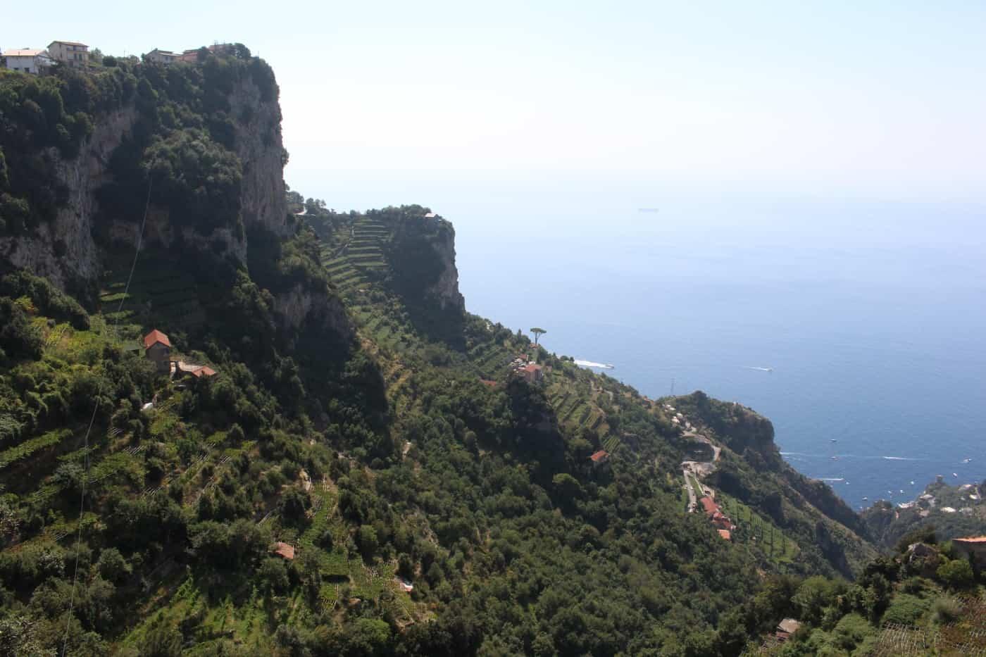 Amalfi Coast Vineyards
