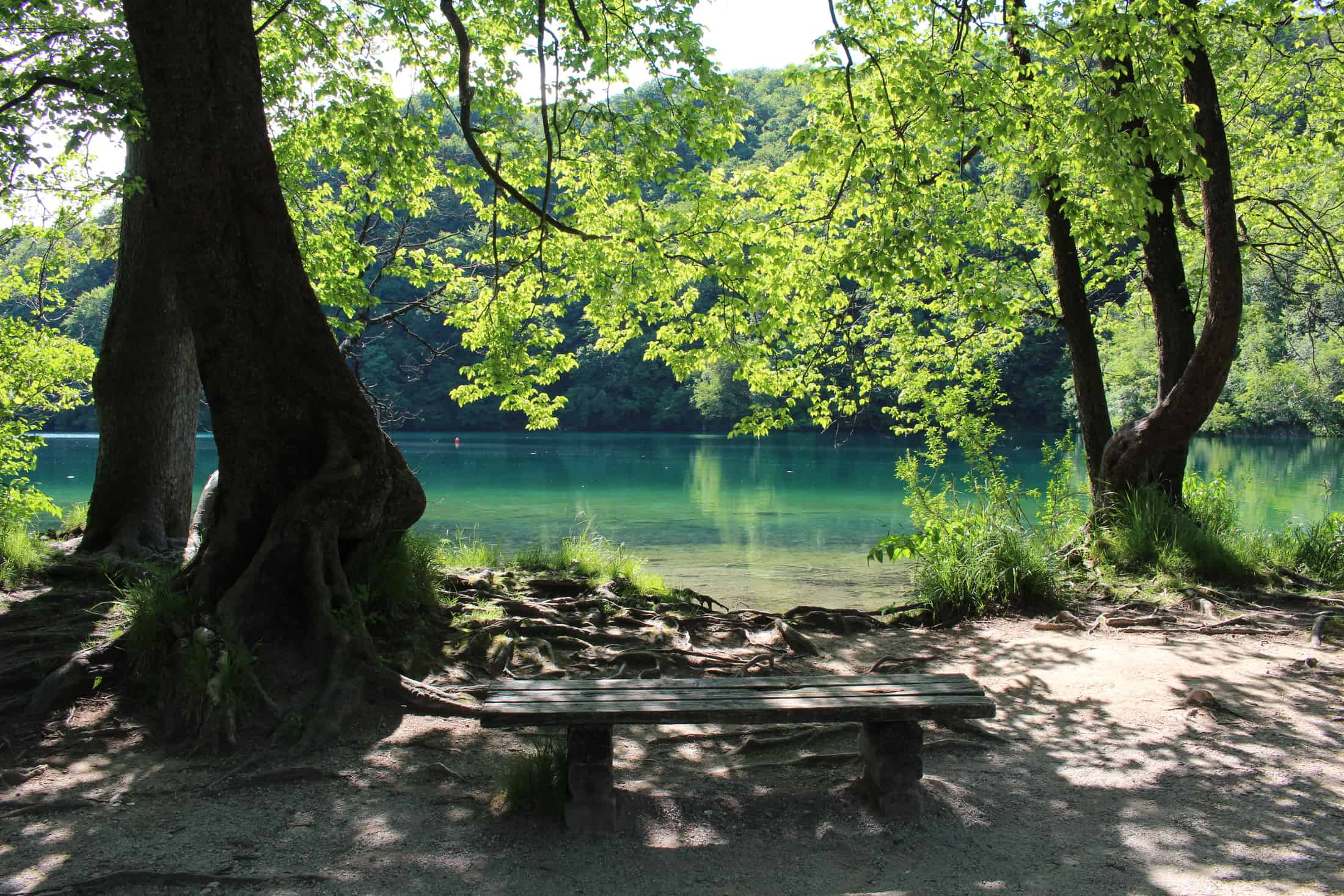 Plitvice Lakes National Park View