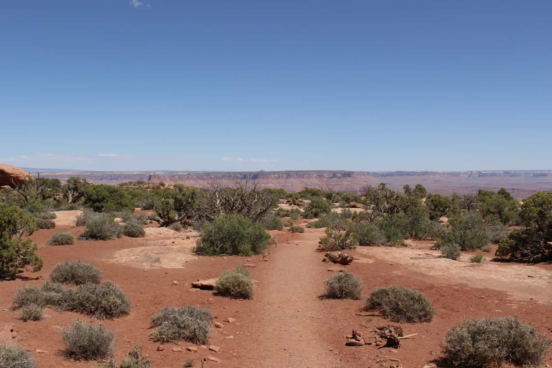 White Rim Overlook Canyonlands