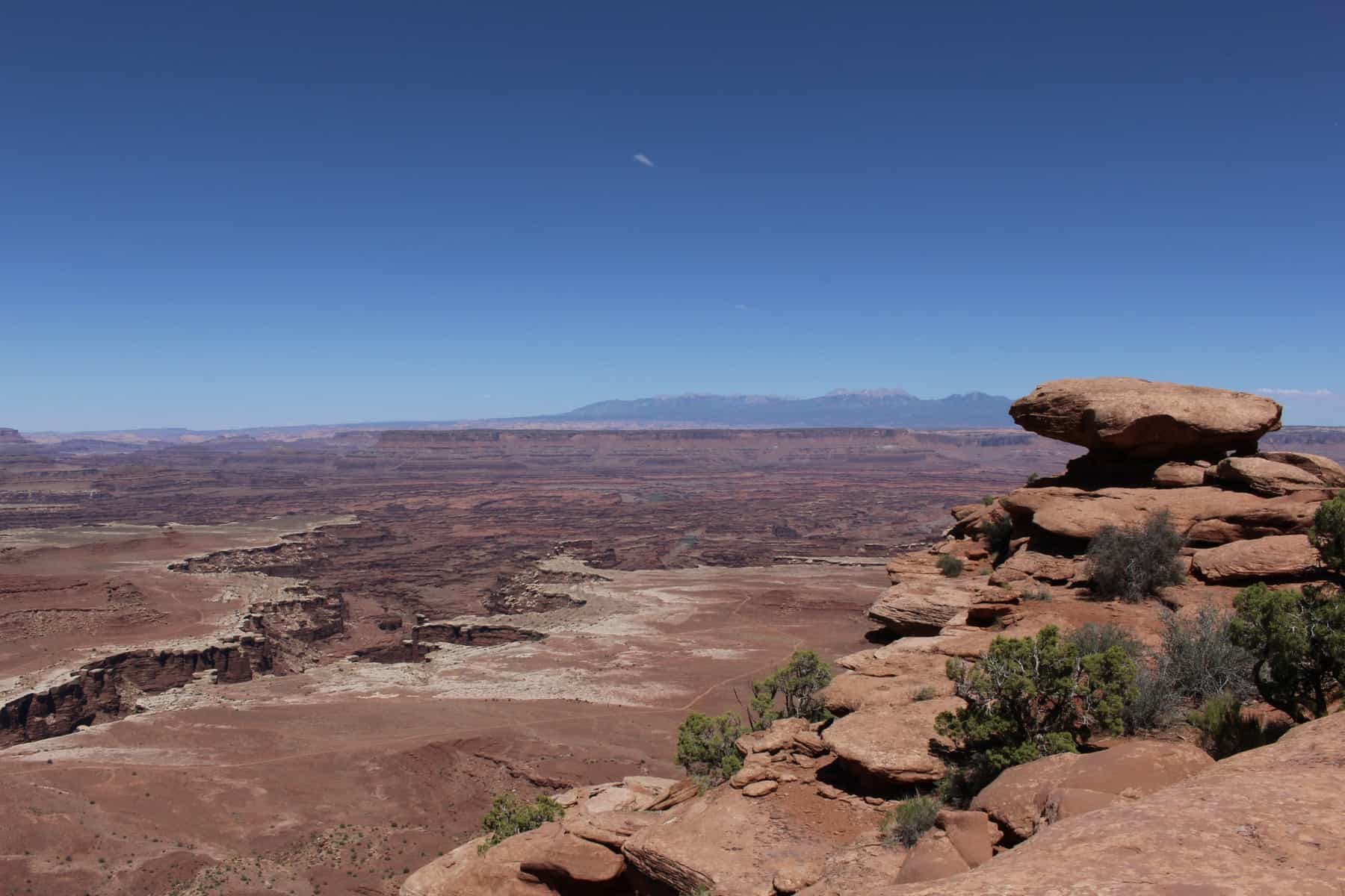 White Rim Overlook Trail