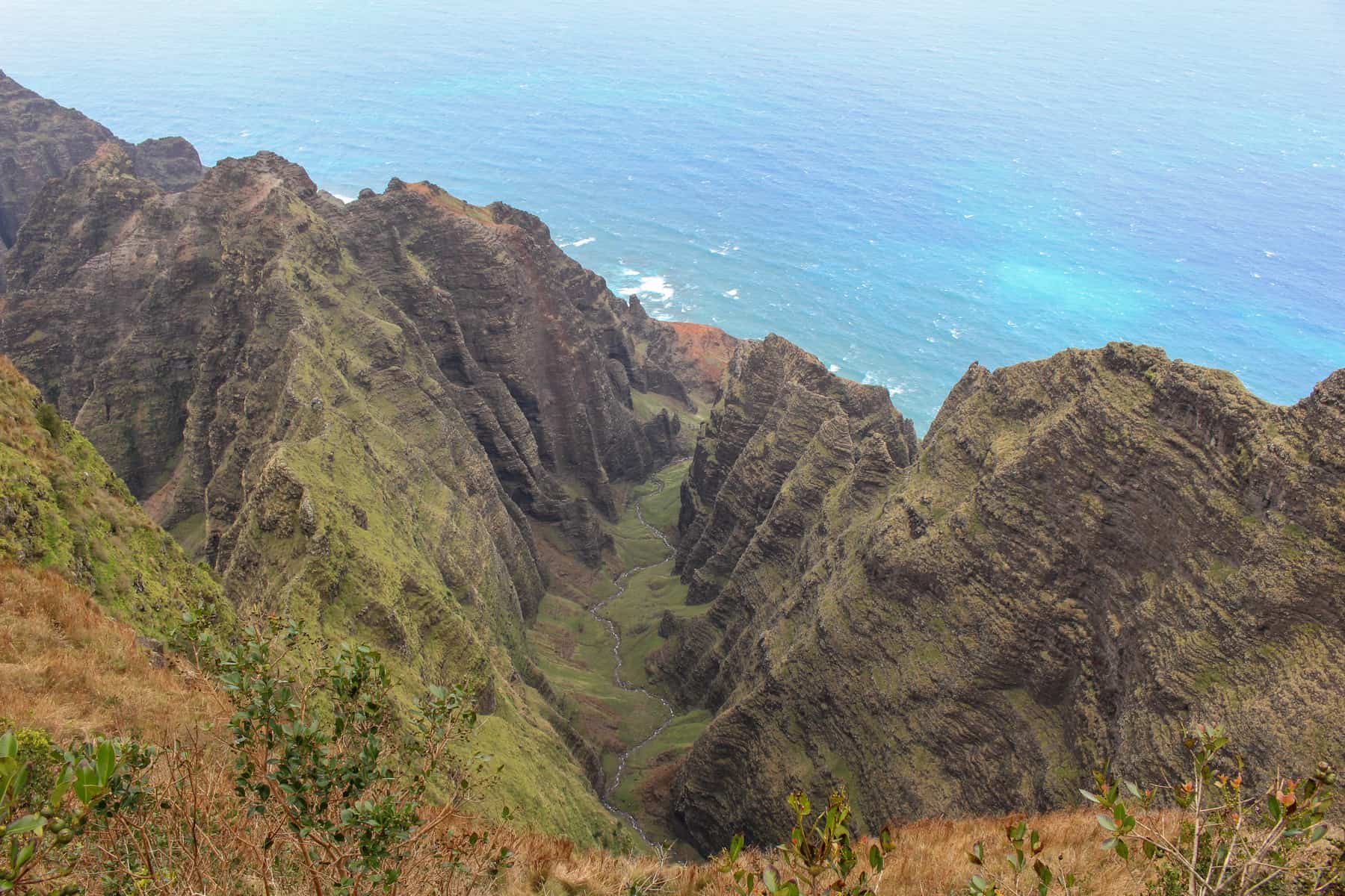 Awa'awapuhi Trail​ View