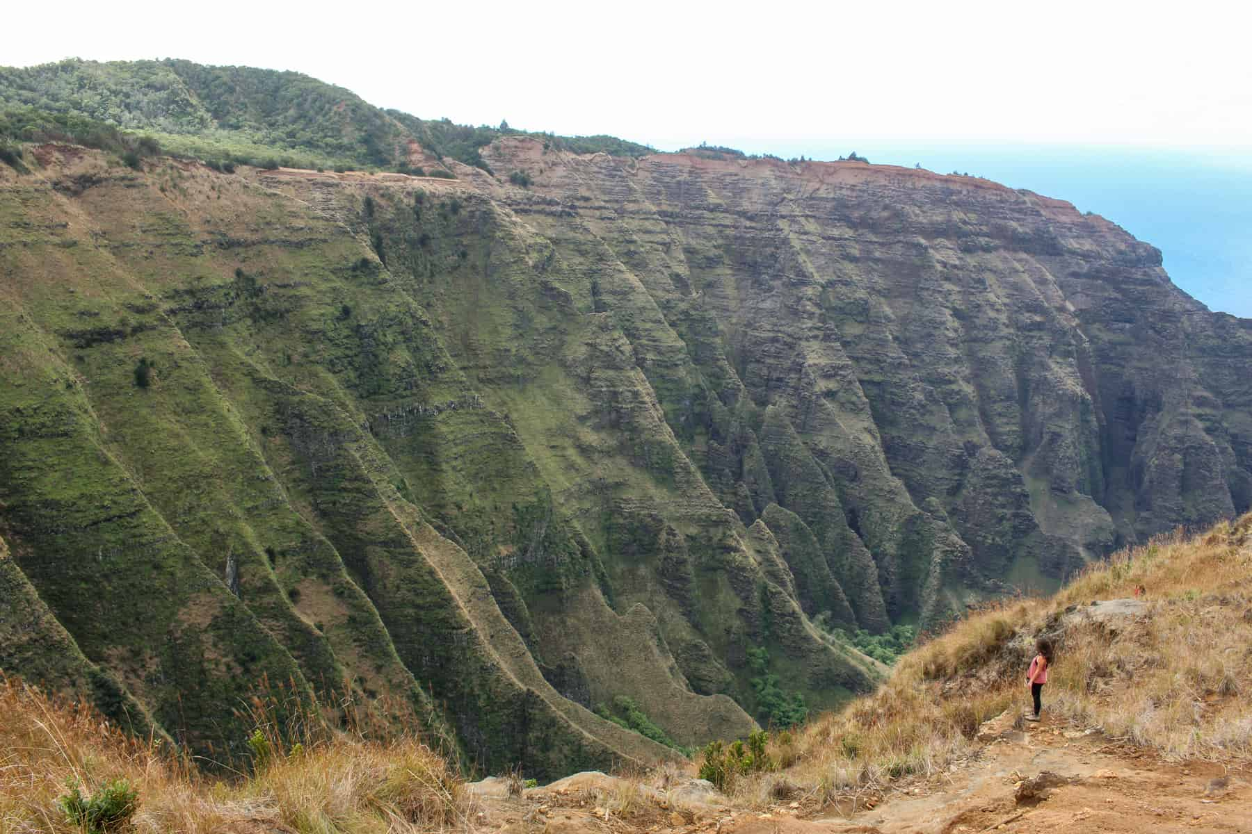 Awa'awapuhi Trail Napali Coast