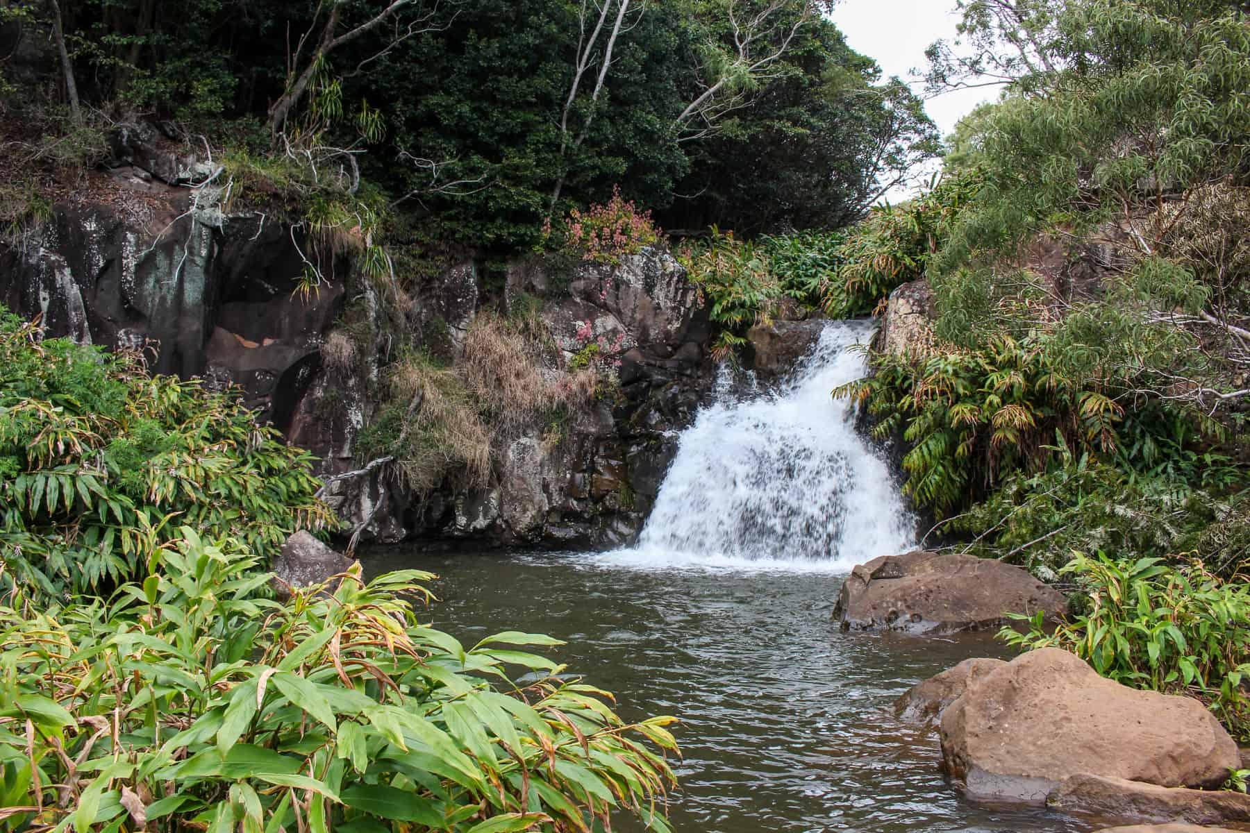 Canyon Trail Waterfall