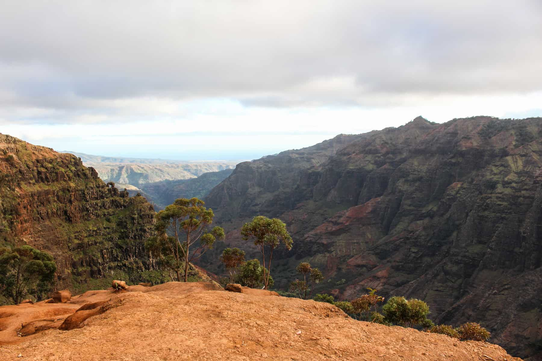 Waimea Canyon Trail Viewpoint