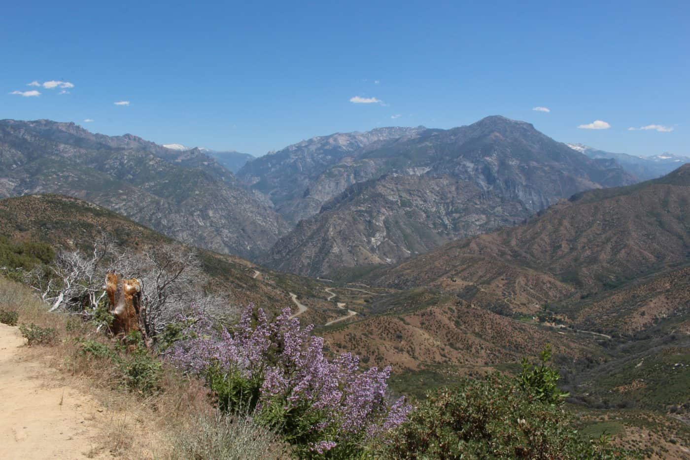 Kings Canyon National Park View