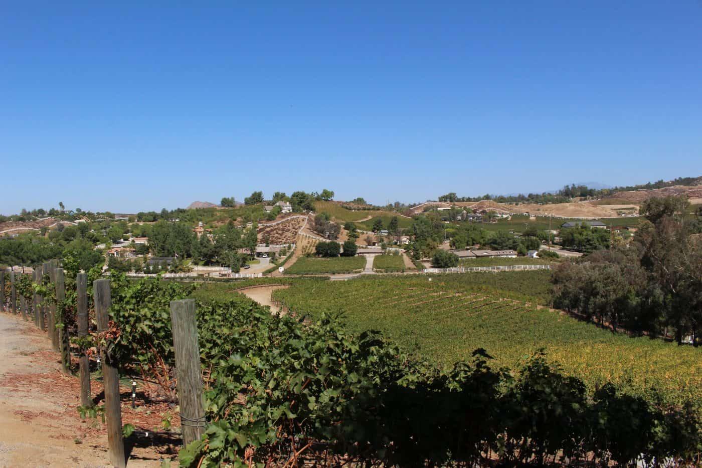 Temecula California Wine Country