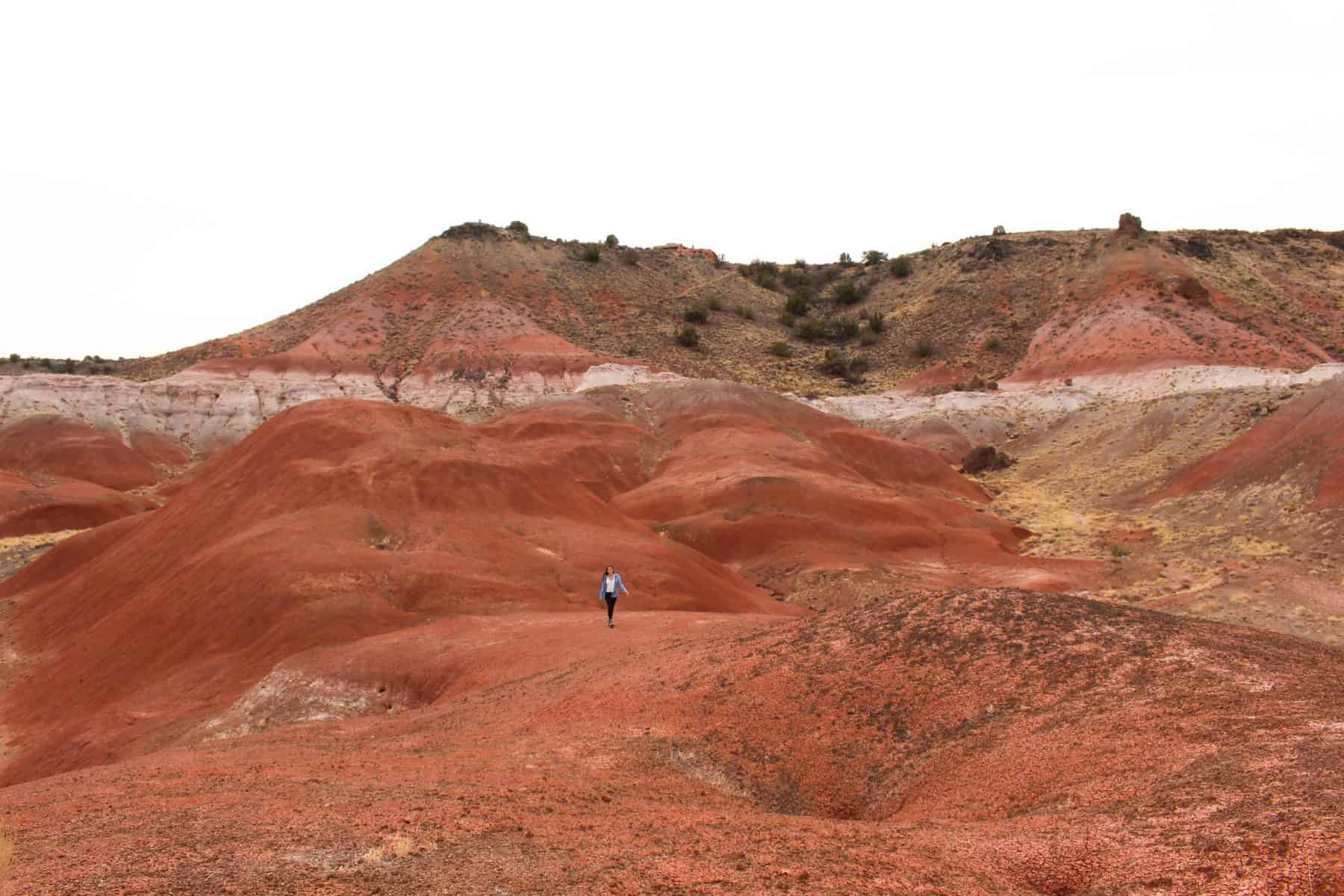 Painted Desert Hike