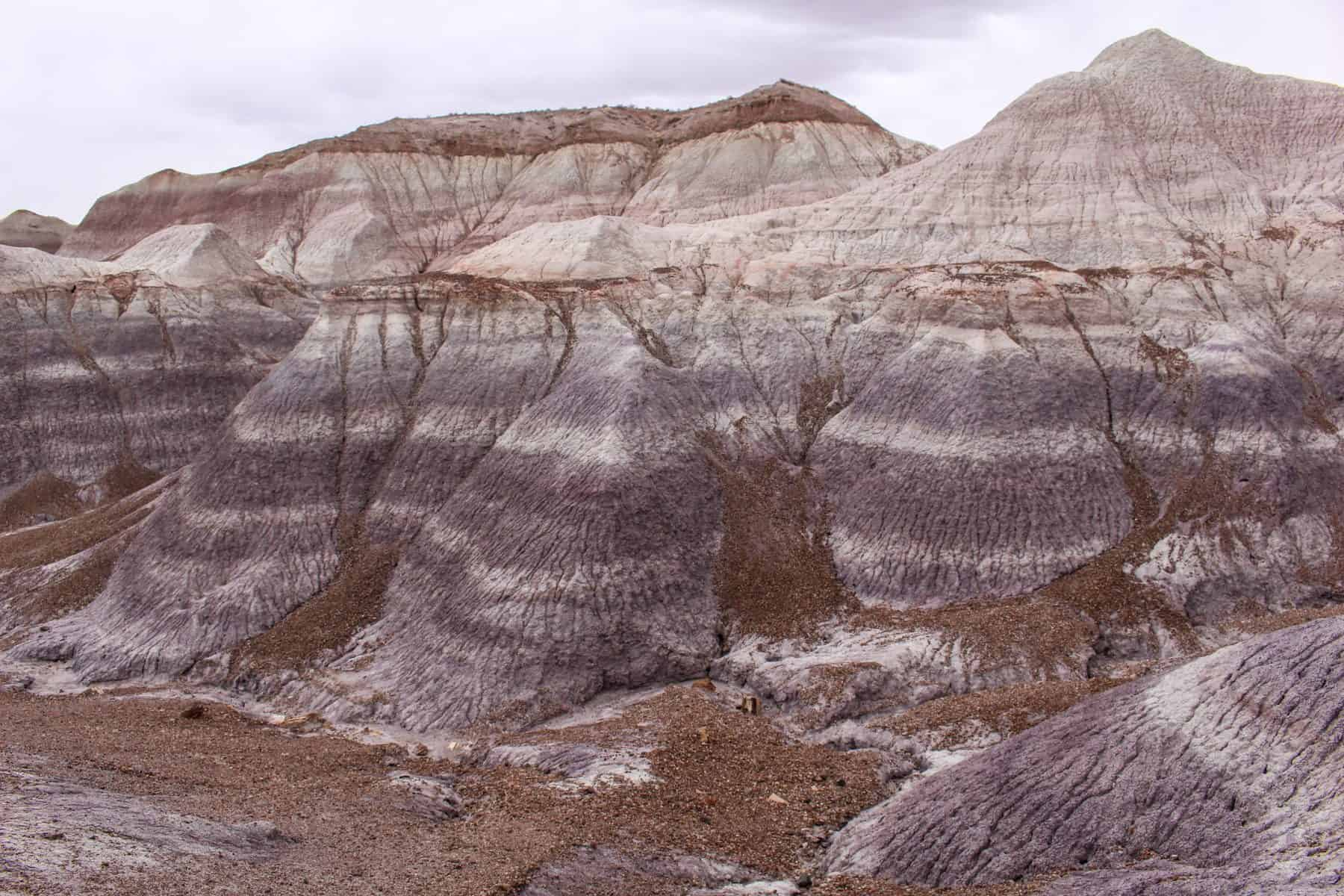 Petrified Forest Blue Mesa Trail