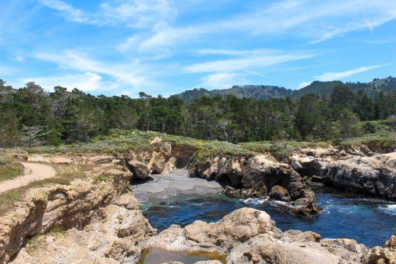Point Lobos State Park Views