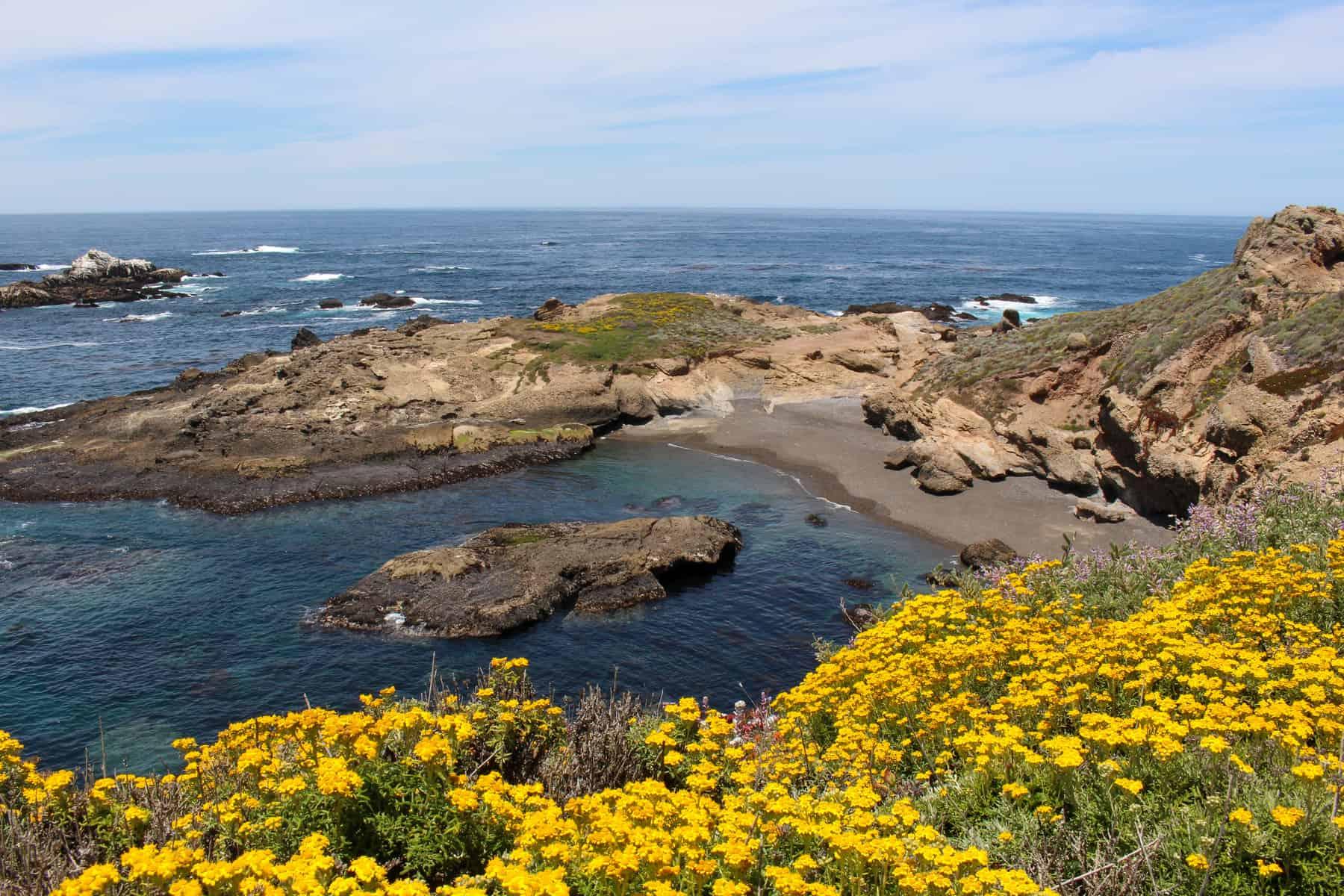 Sea Lion Cove in Point Lobos