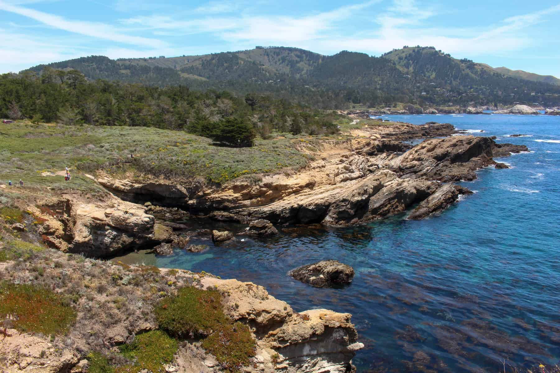 South Shore Trail View in Point Lobos