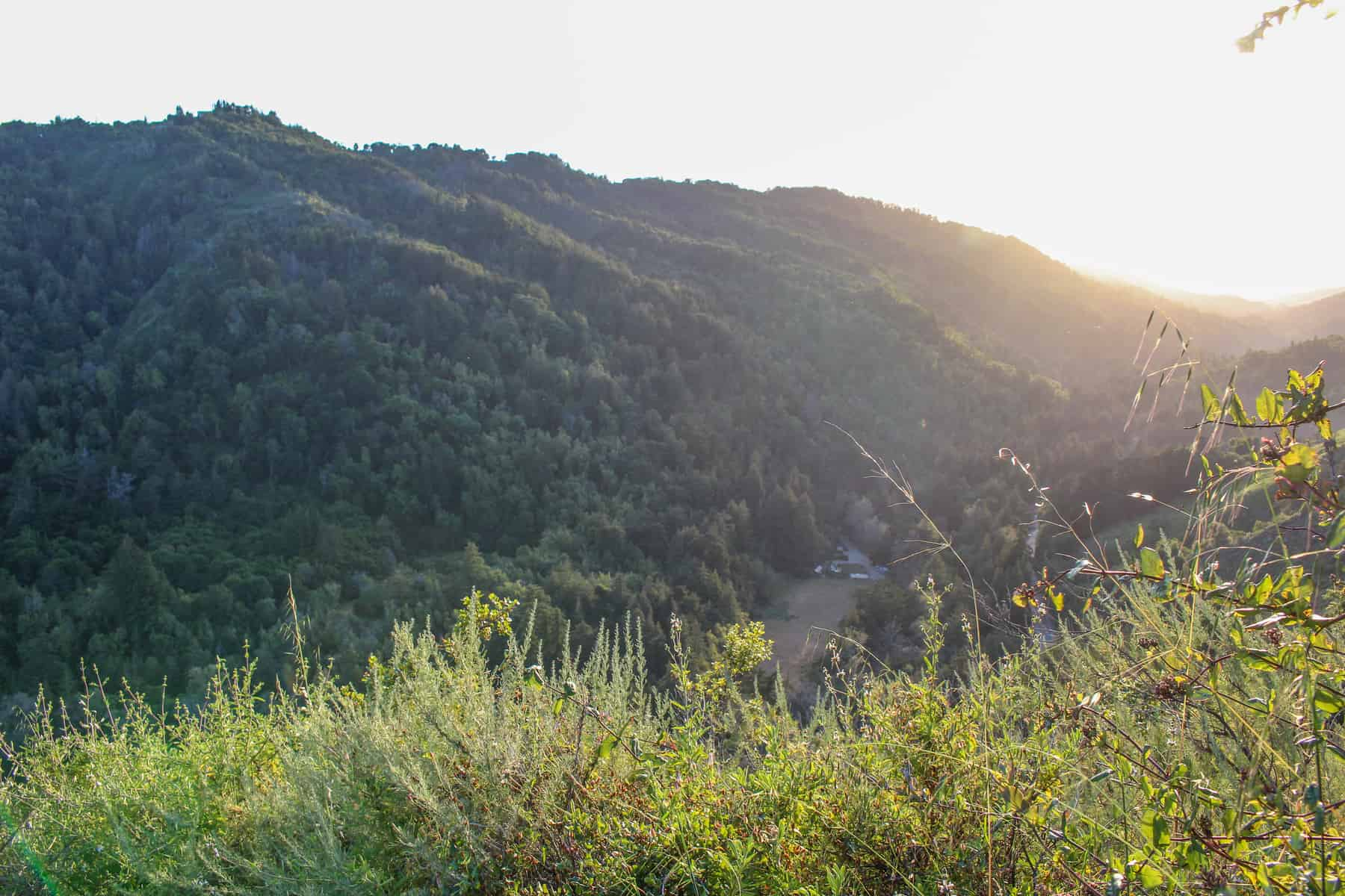 Valley View Trail Big Sur
