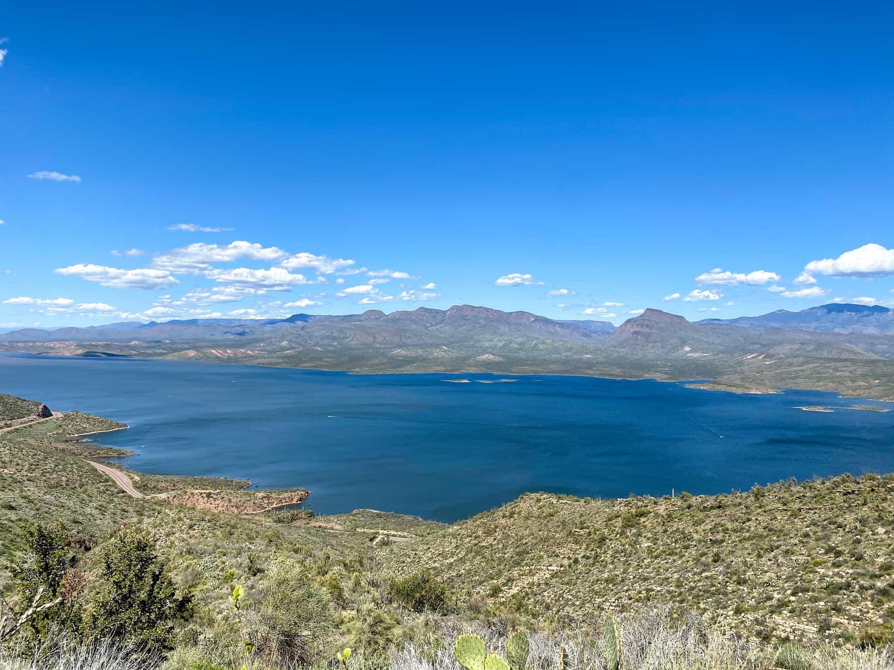 Roosevelt Lake View