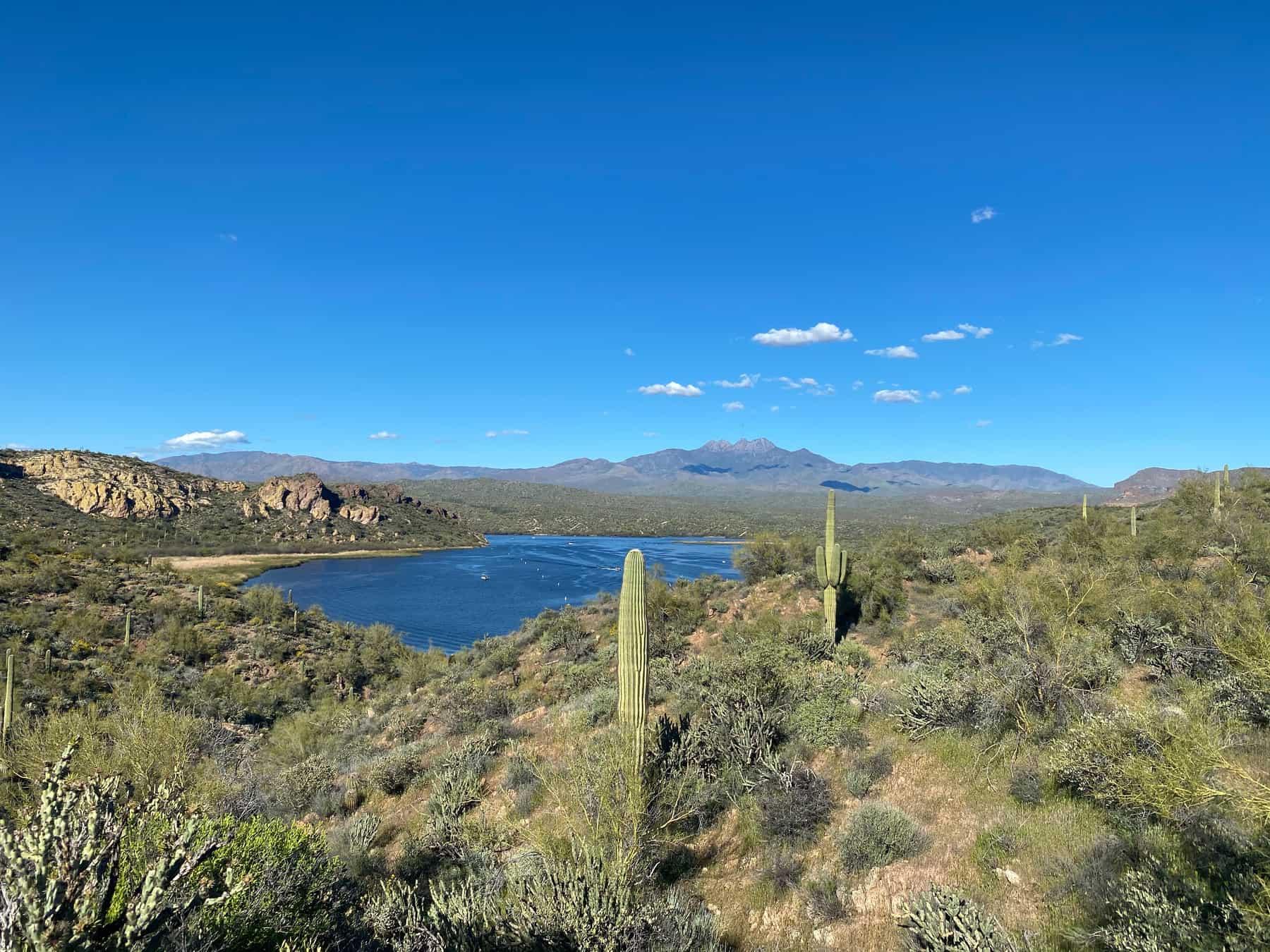 Saguaro Lake Hiking Trail