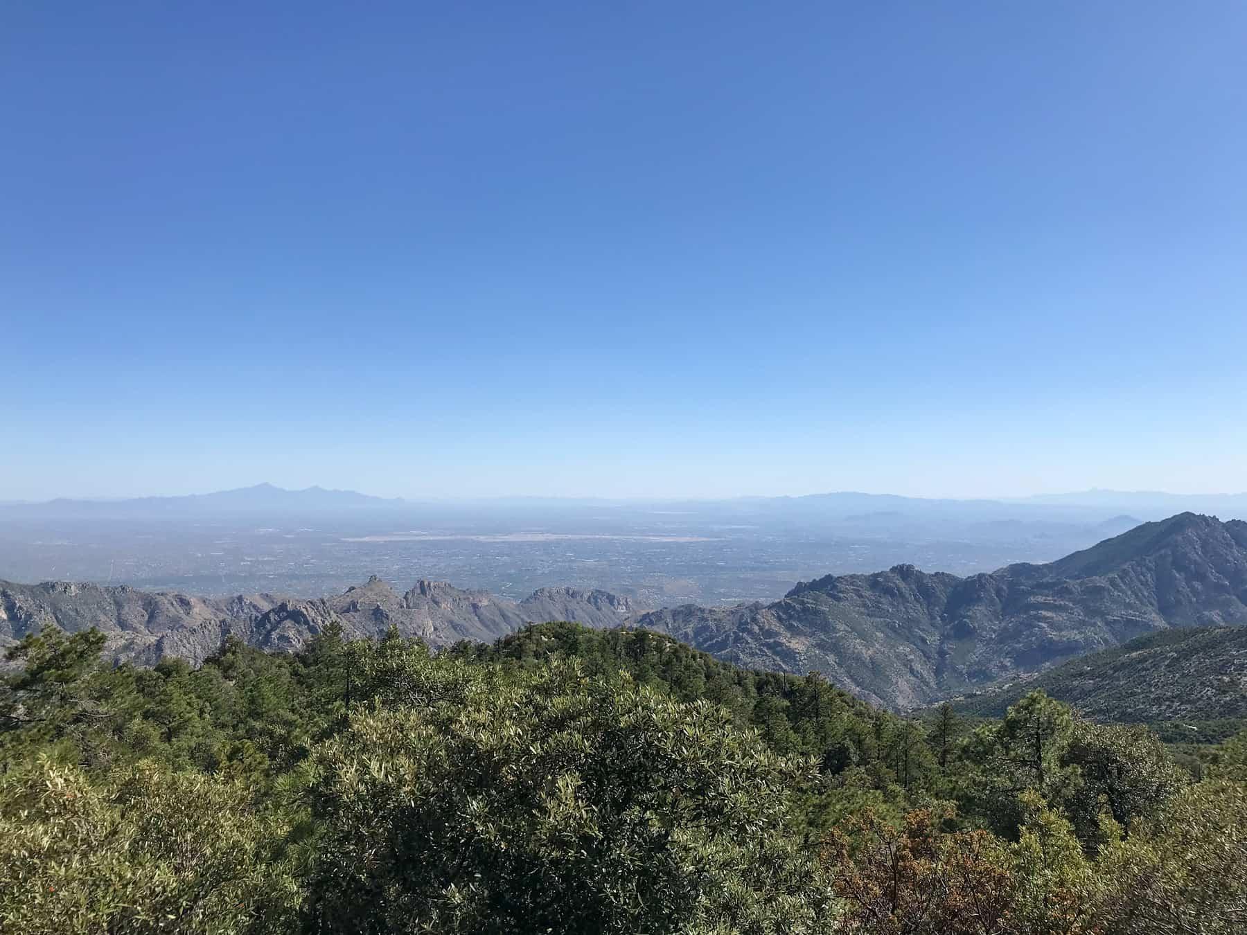 Mt Lemmon Hike