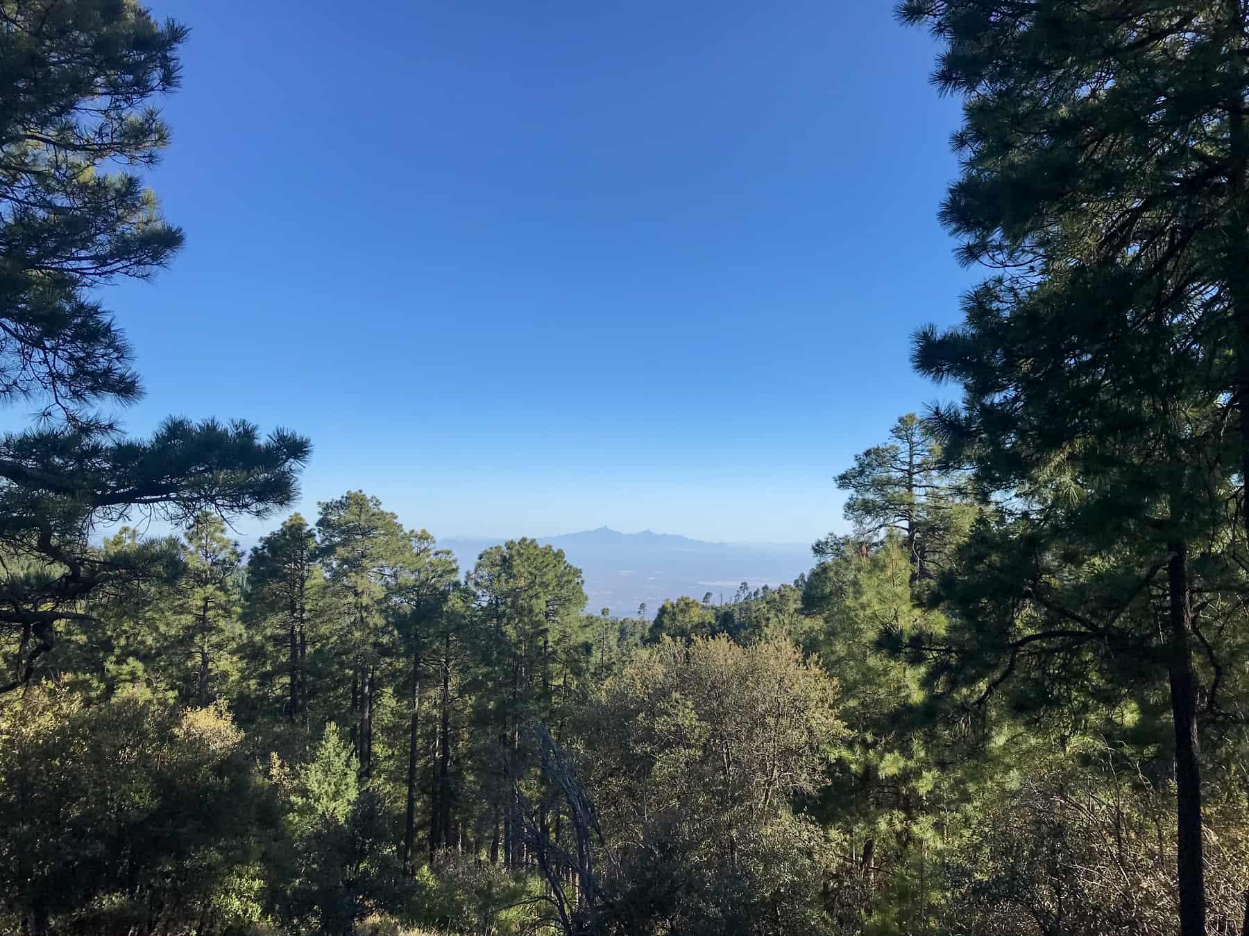 Mt Lemmon View