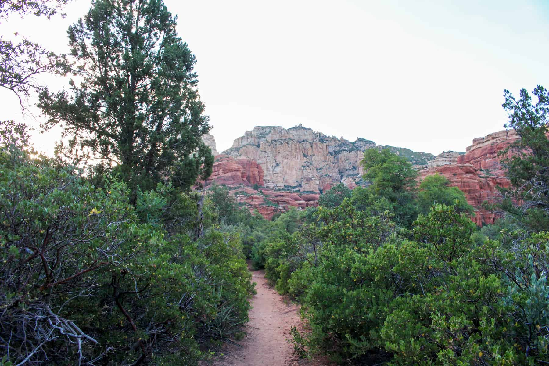 Boynton Canyon Trail Sedona