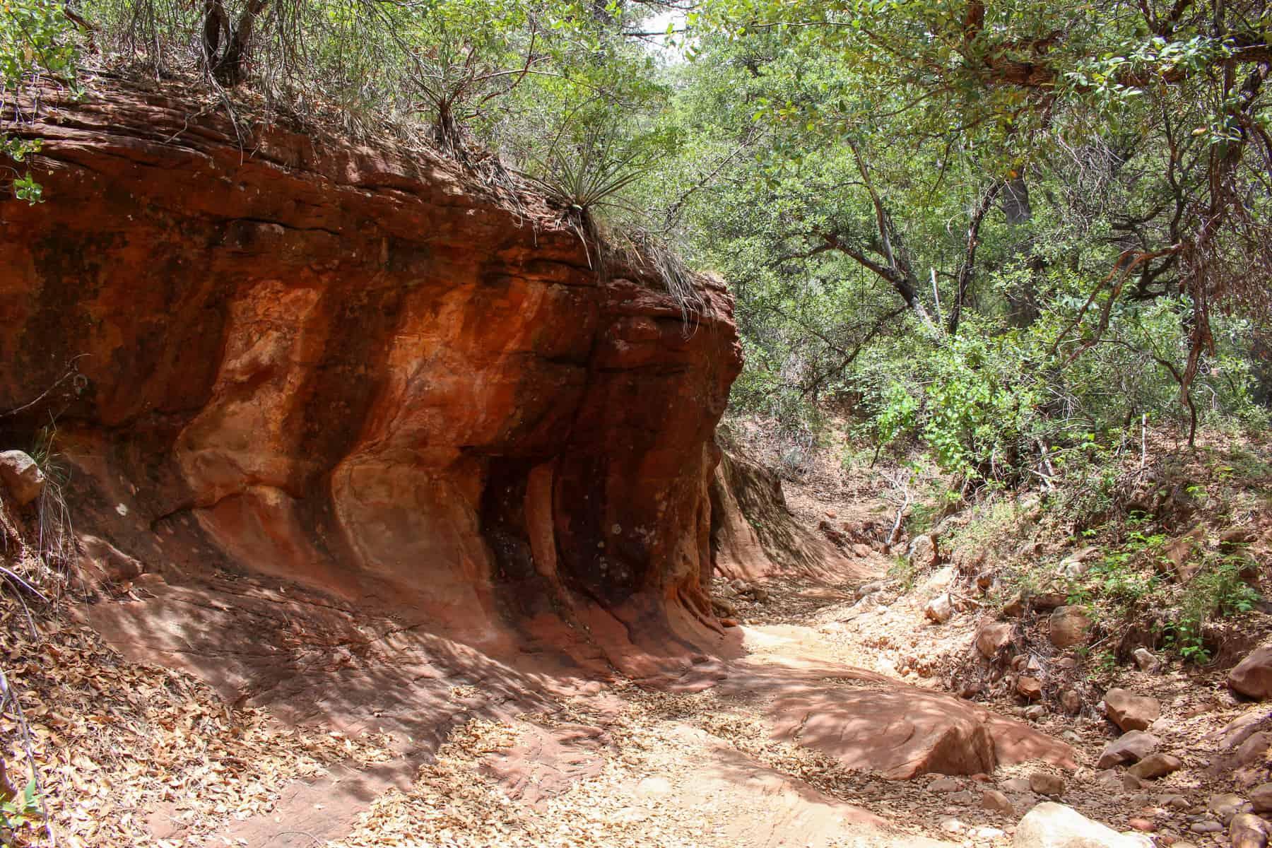 Long Canyon Sedona