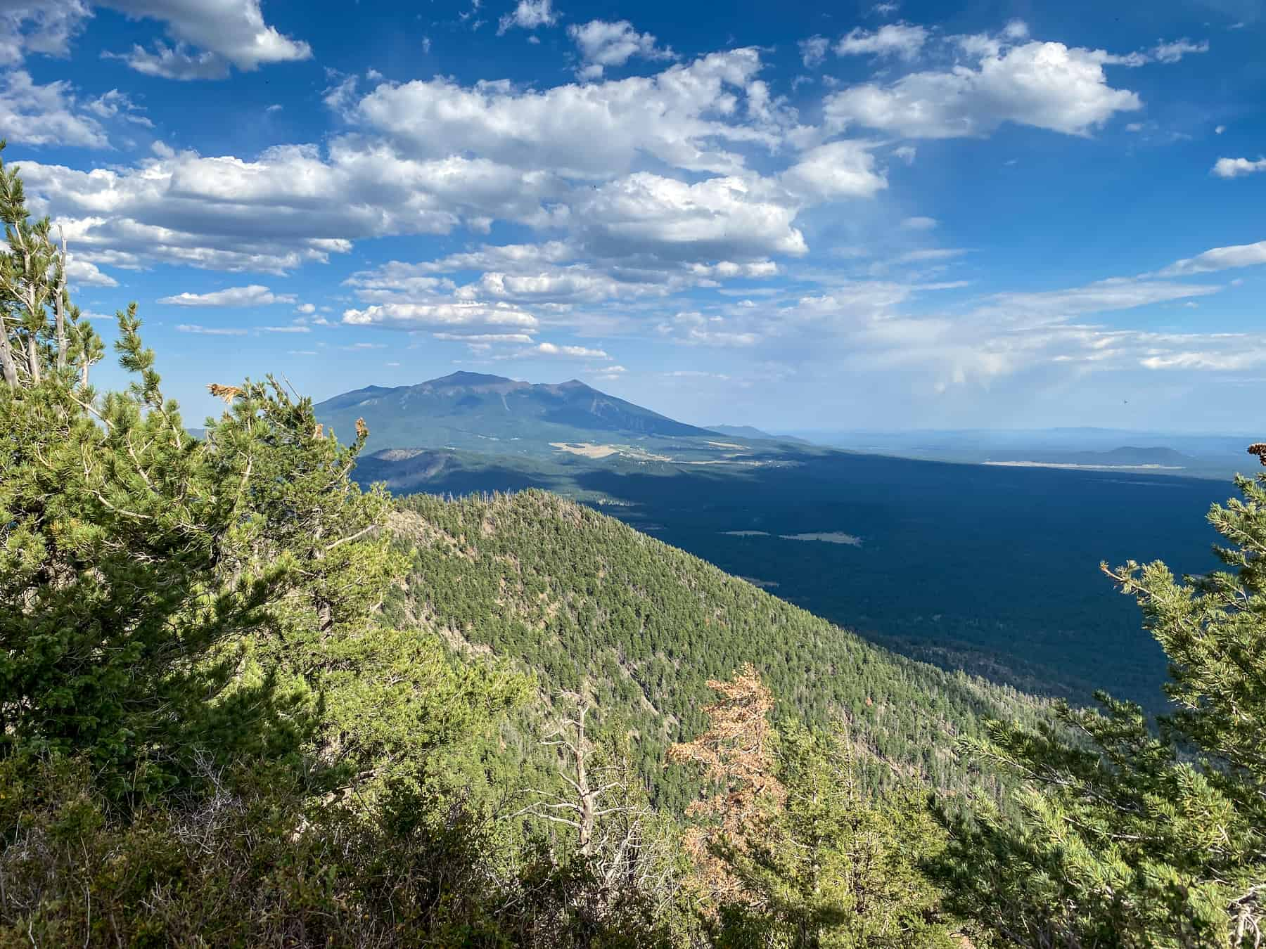 Humphreys Peak Flagstaff