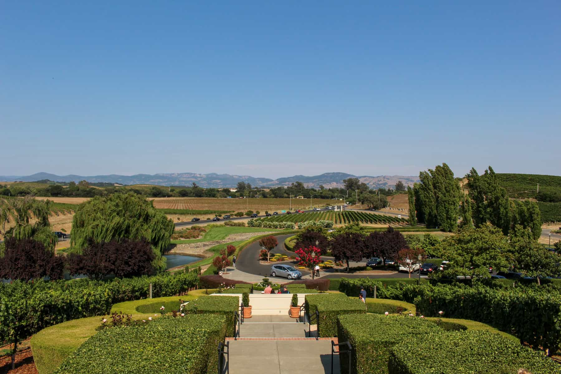 Domain Carnerous View of Napa Valley