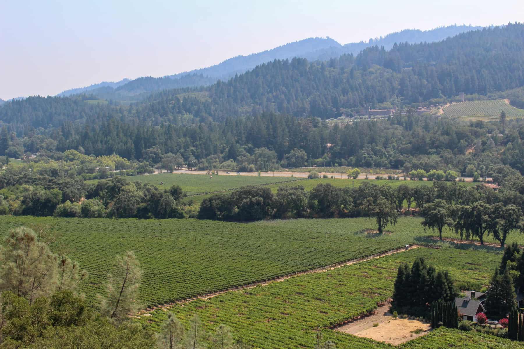Napa Valley Weekend at Sterling Vineyards